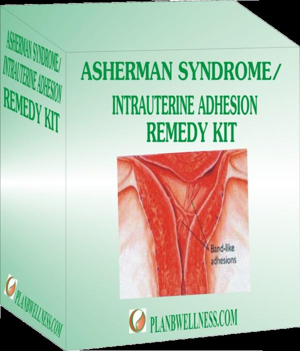 Asherman-kit-879x1024