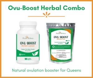 Ovu-Boost herbal combo