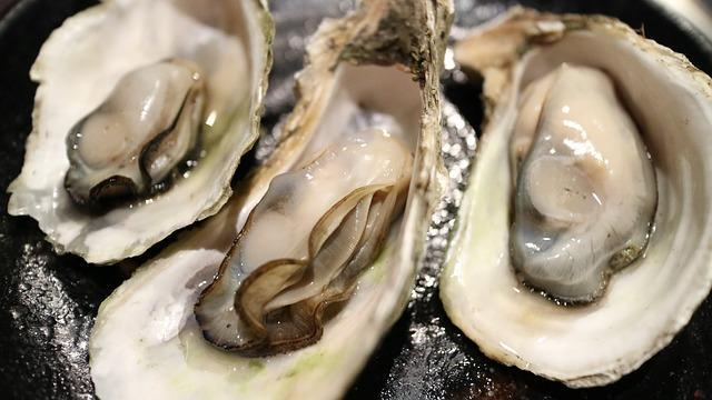 oysters for ovulation