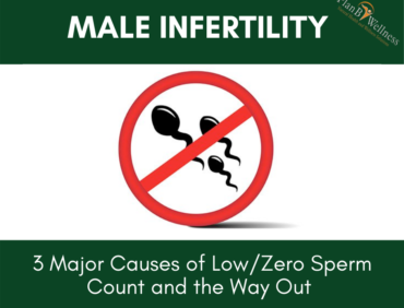 Male Infertility: 3 Major Causes of Low/Zero Sperm Count and the Way Out