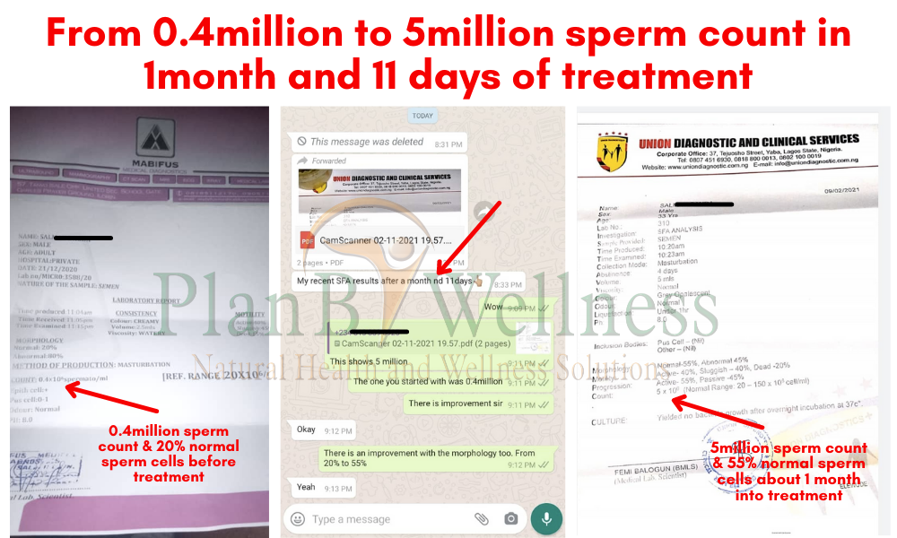 Natural Remedy for Azoospermia_Oligospermia Testimony Plan B Wellness